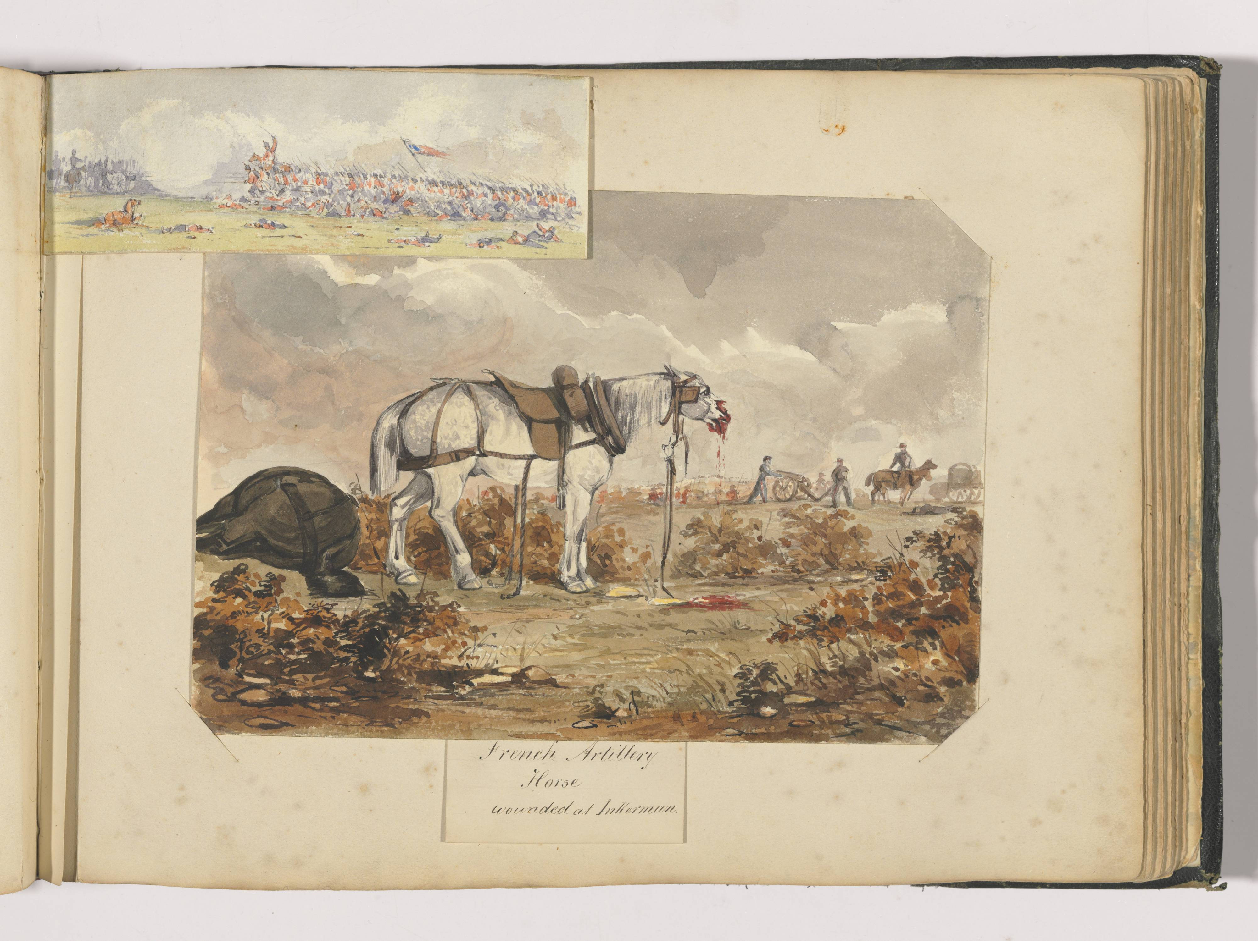 Watercolour painting. A grey horse stands next to a fallen bay (brown) horse. The grey has a bloodied and broken muzzle. Soldiers and a cannon are visible in the distance. In the top left corner is a separate battle scene showing troops advancing towards each other with fallen men and horses in front.