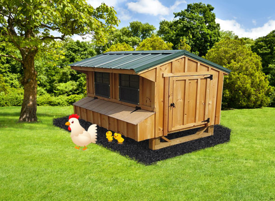 Chicken Coop Gray