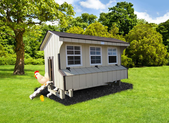 Chicken Coop Biege