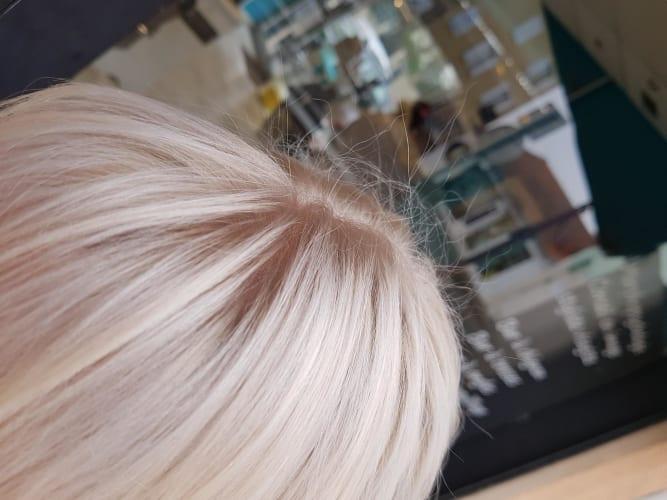 Un blond polaire