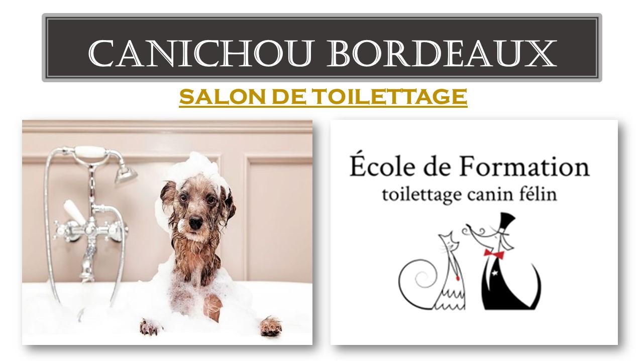 Salon de toilettage à Bordeaux