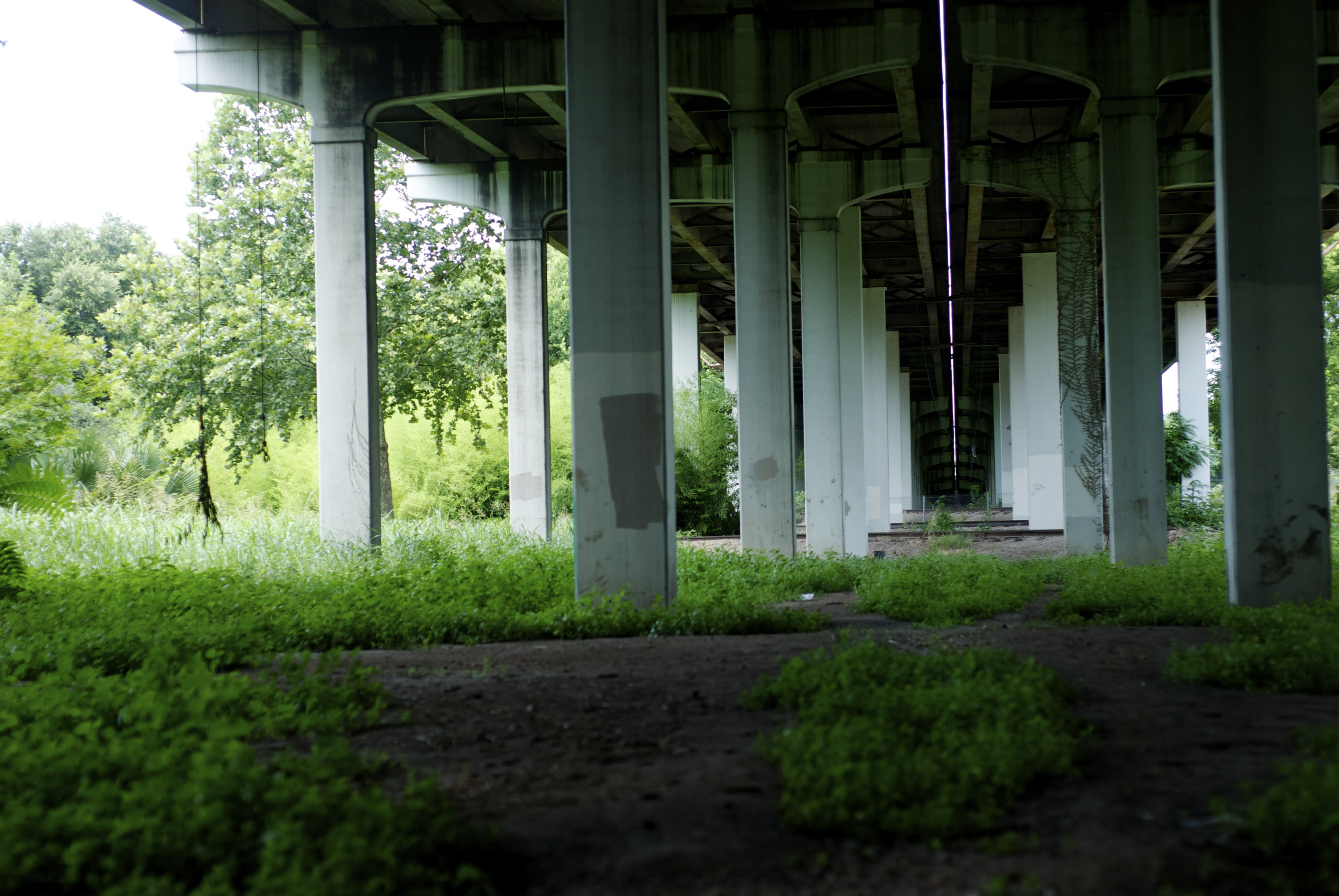 Swing Bridge_11