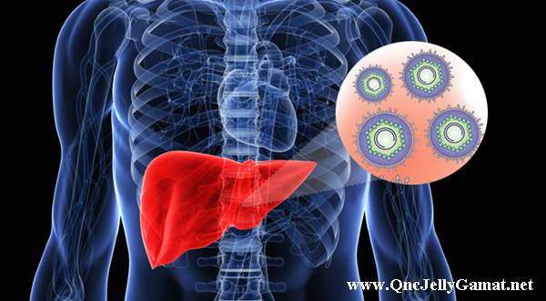 Obat Hepatitis B Ternyata Susu Kambing