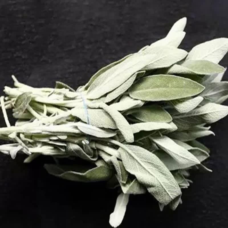 Salvia blanca de California, 3 mechones, hoja pura, purificación ahumada, para fumar