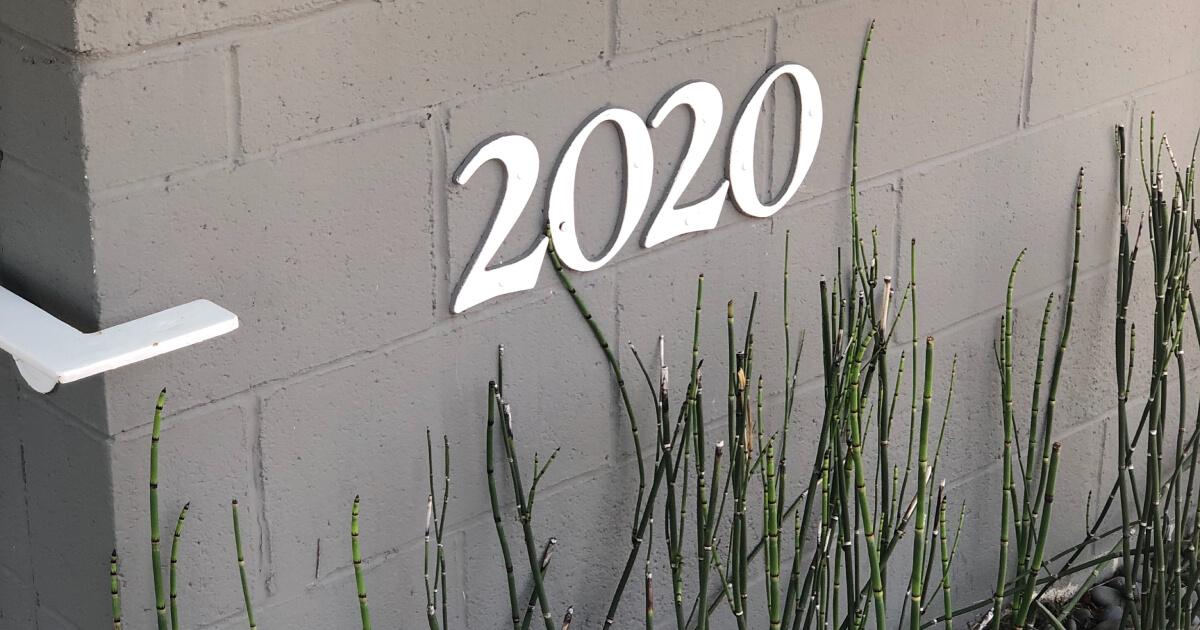什么2020举行的移动游戏球