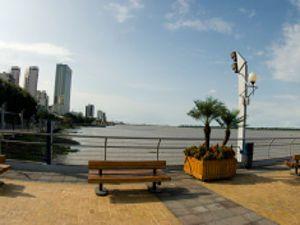 Ofertas de vuelos económicos a Guayaquil