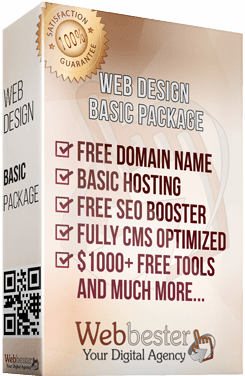 Basic package web design services