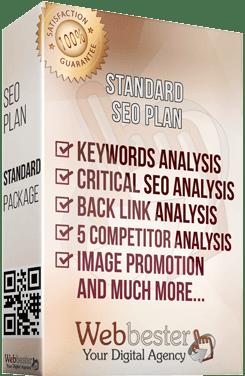 Standard SEO Plan