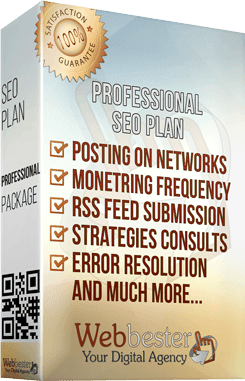 Professional SEO Plan