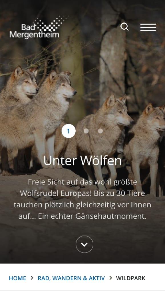 Screenshot Bad Mergentheim