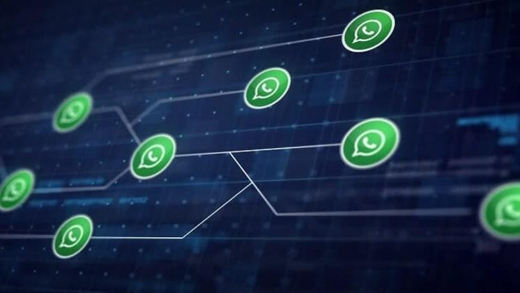 Thumbnail do post Whatsapp para negócios: fique por dentro da novidade