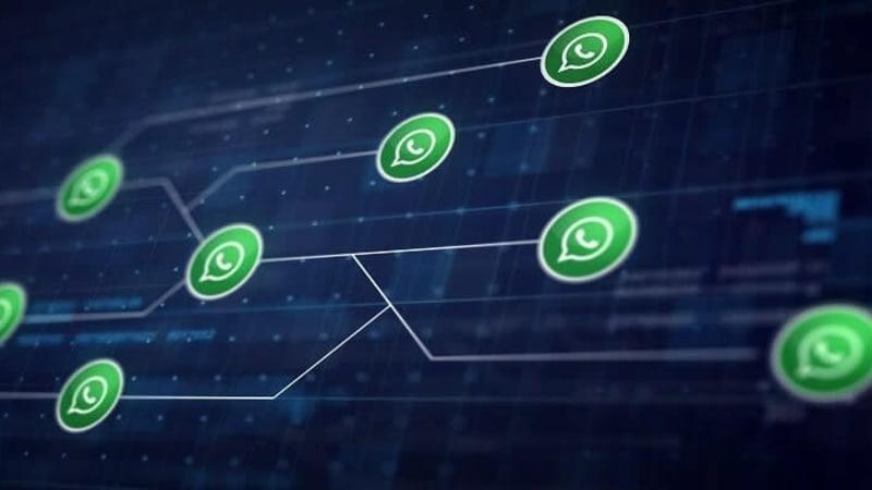 Imagem de destaque do post Whatsapp para negócios: fique por dentro da novidade