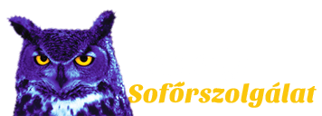 Bagoly Sofőrszolgálat - iCC - WebSite CarbonOffset