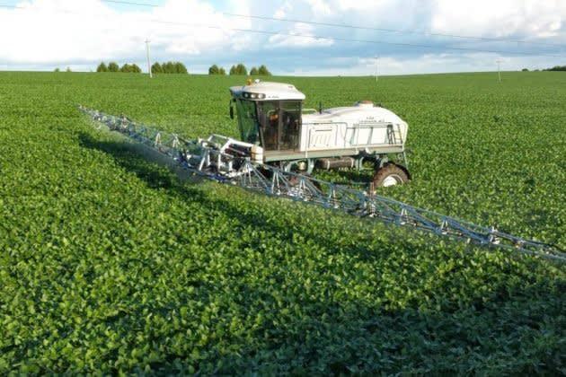 Anvisa autoriza uso do estoque de paraquate na safra 2020/21