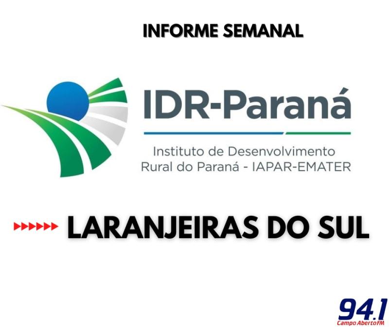 IDR Paraná de Laranjeiras do Sul  orienta produtores na adubação do milho de silagem