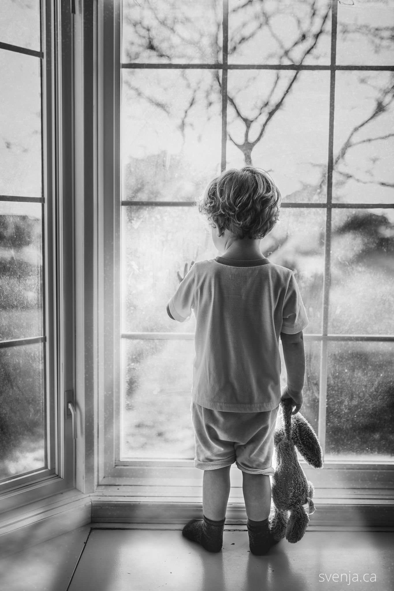 black and white photo of a toddler holding his stuffed bunny wild looking outside of a bay window