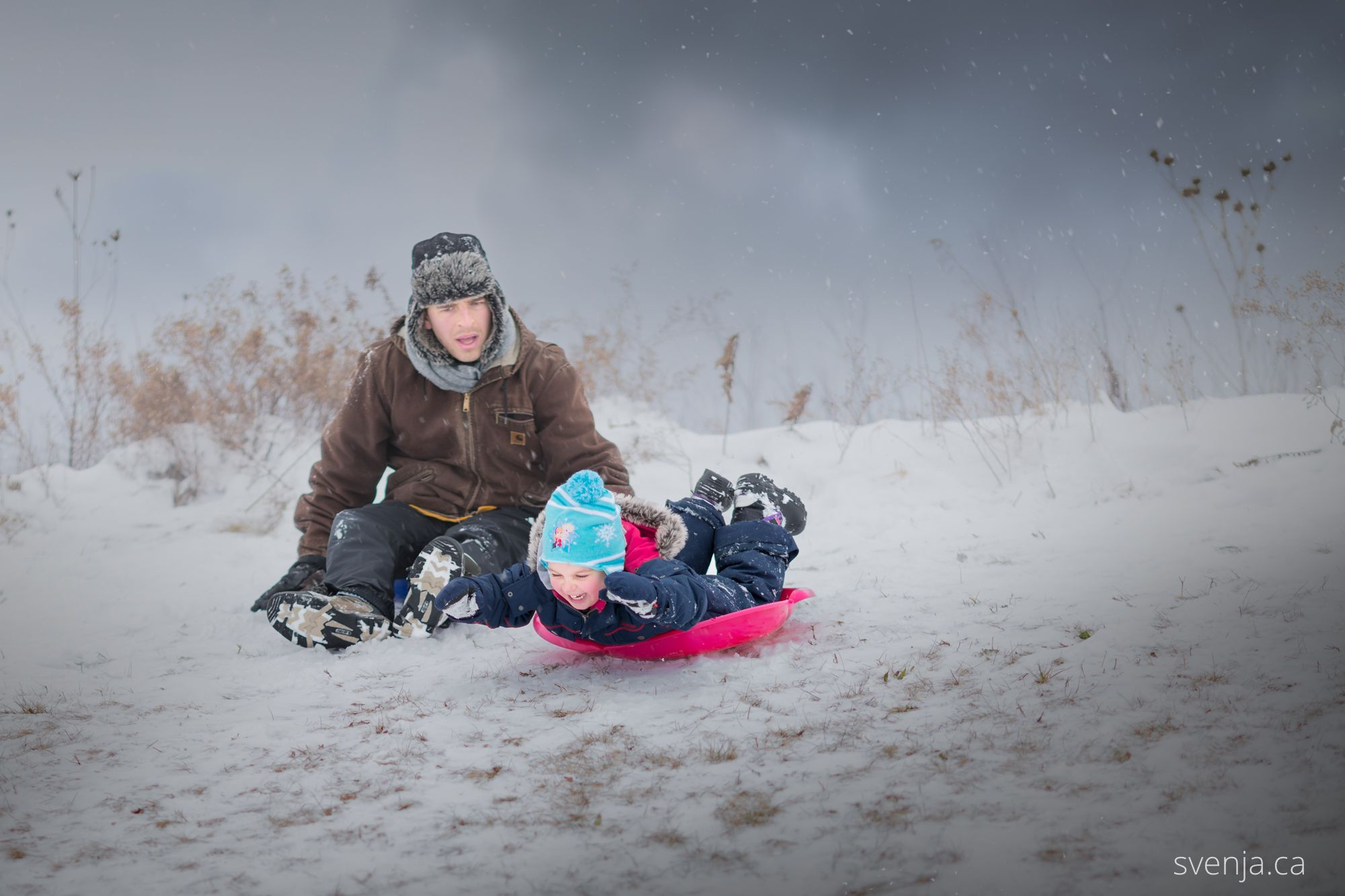 a young girl goes head-first on a sled down a hill, startling her father