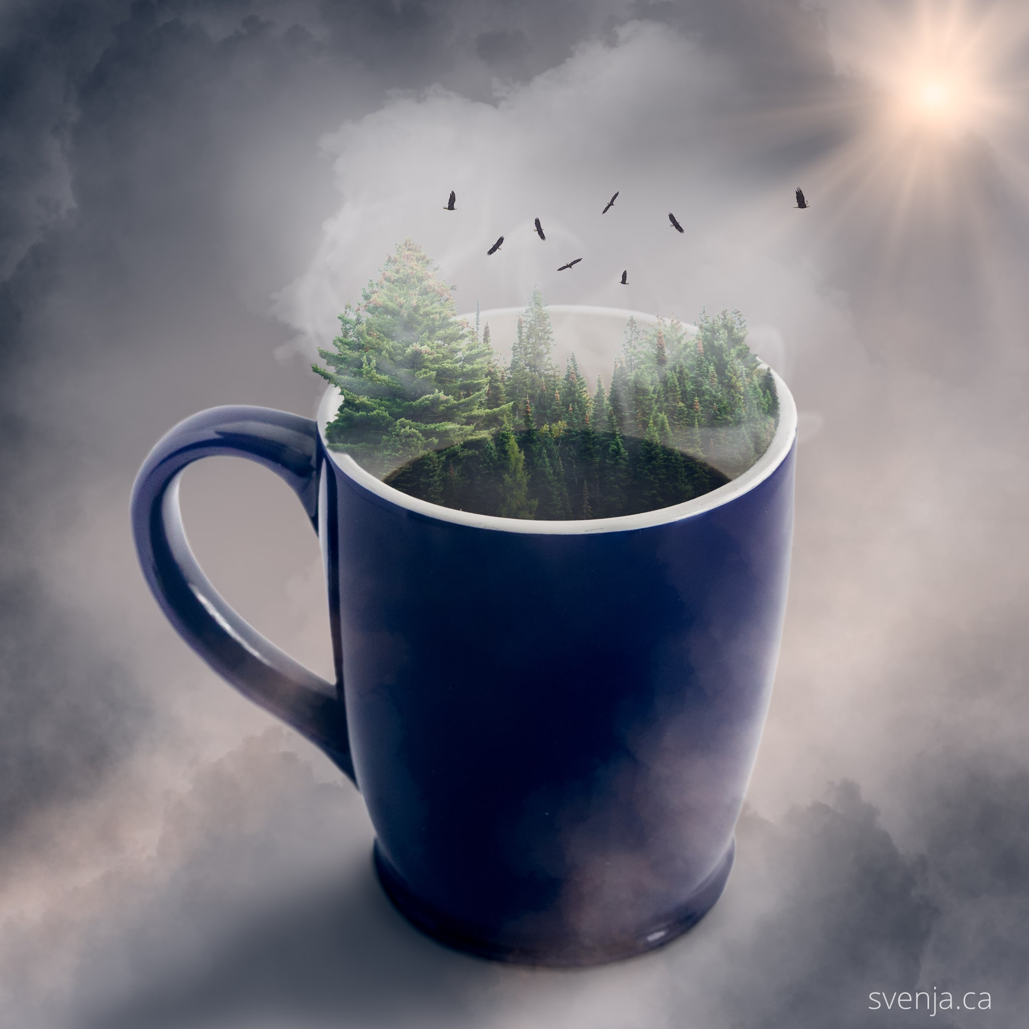 image of a coffee much with a forest emerging from the cup