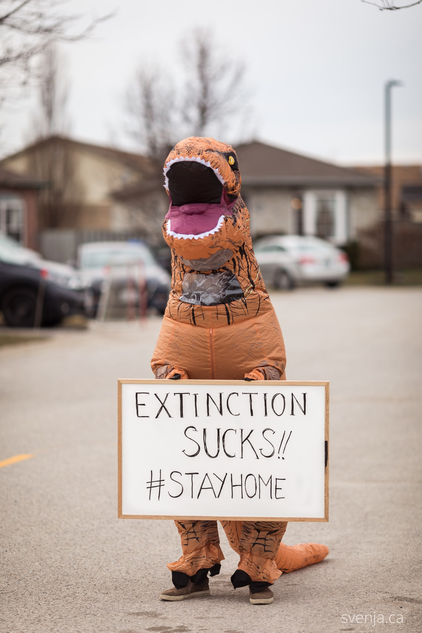 a man in a dinosaur costume holds a sign on the street that reads 'Extinction Sucks #StayHomeh