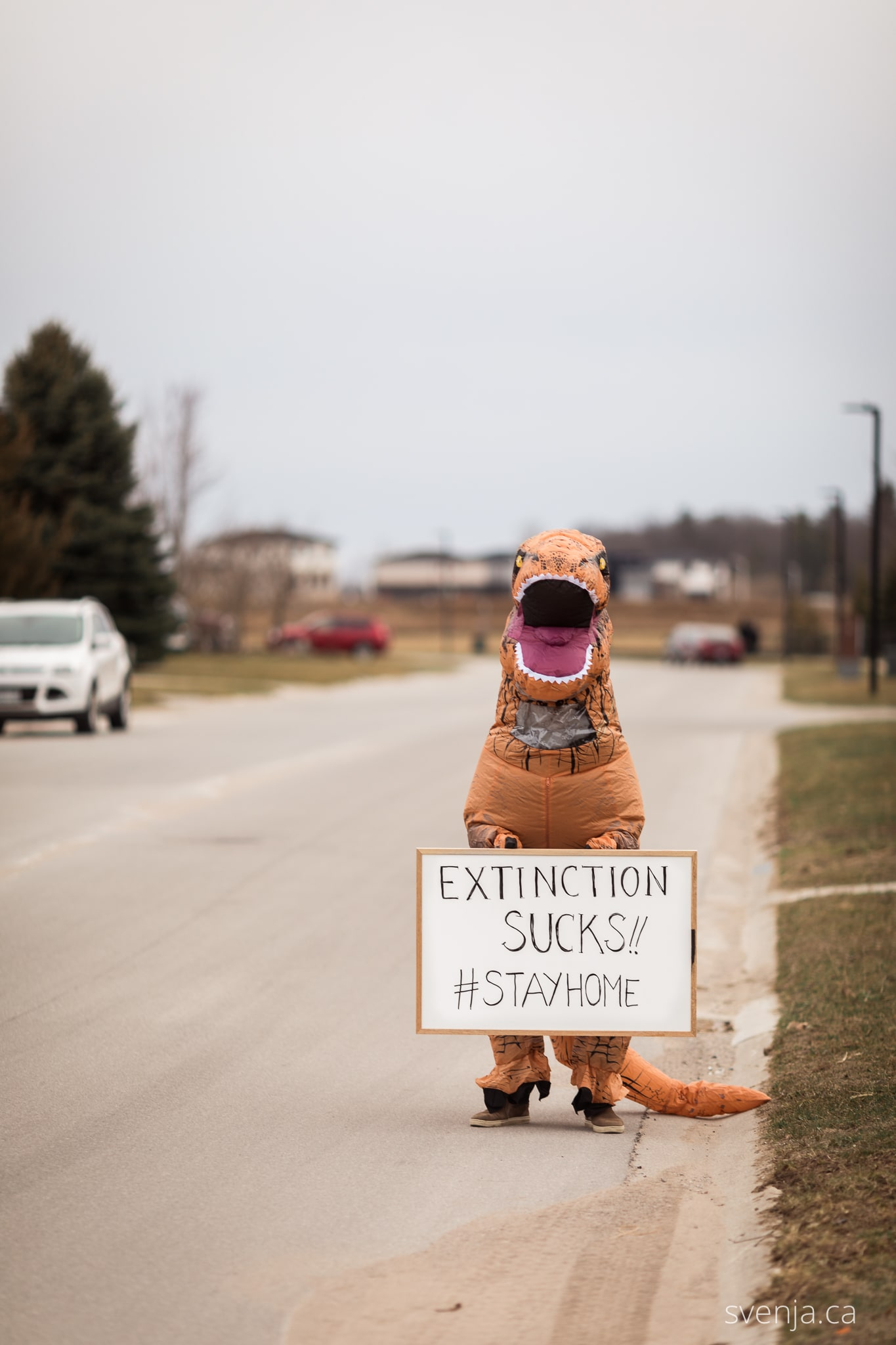 a man in a dinosaur costume holds a sign on the street that reads 'Extinction Sucks #StayHome