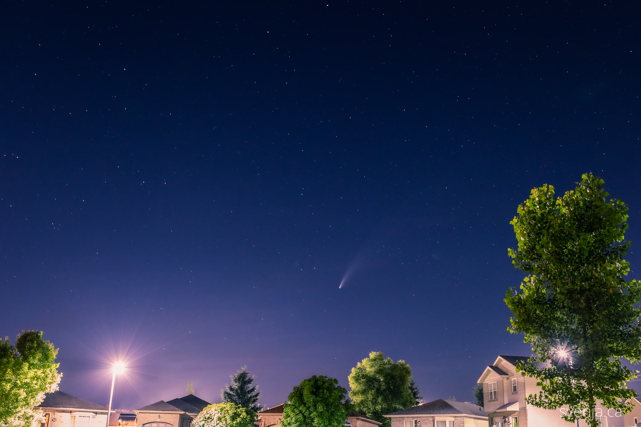 comet Neowise appears in a starry sky above a neighbourhood