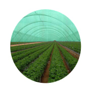 Shade Nets - Green Color, Lightweight, High Flexibility, For Greens Protection - Rokh Plastic Toos Company