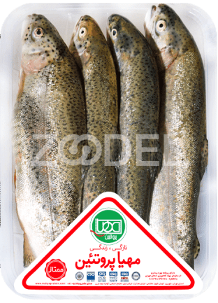 Trout Fish 1 kg Mahya Protein