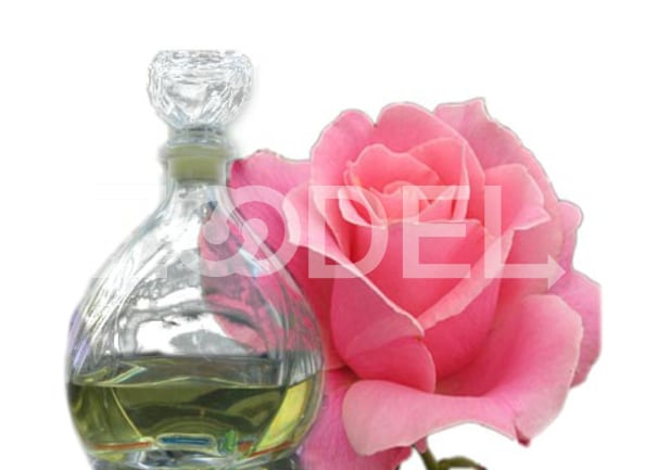 Damask Rose Oil Code E 56 Sana Company