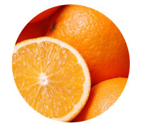 Natural Thomson Orange for Export