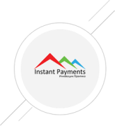 Instant Payments  LLP