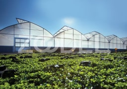 Greenhouse Plastic Film - Multi-layered - For Agriculture & Horticulture Use - Persian Poushesh Polymer Company