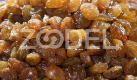 Malayeri Raisins