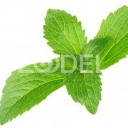 Industrial Intermediates of Stevia