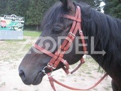 Double Bridle for Army Horses with 2 Rein Handmade