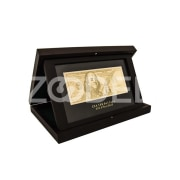 100 USD banknote in the case