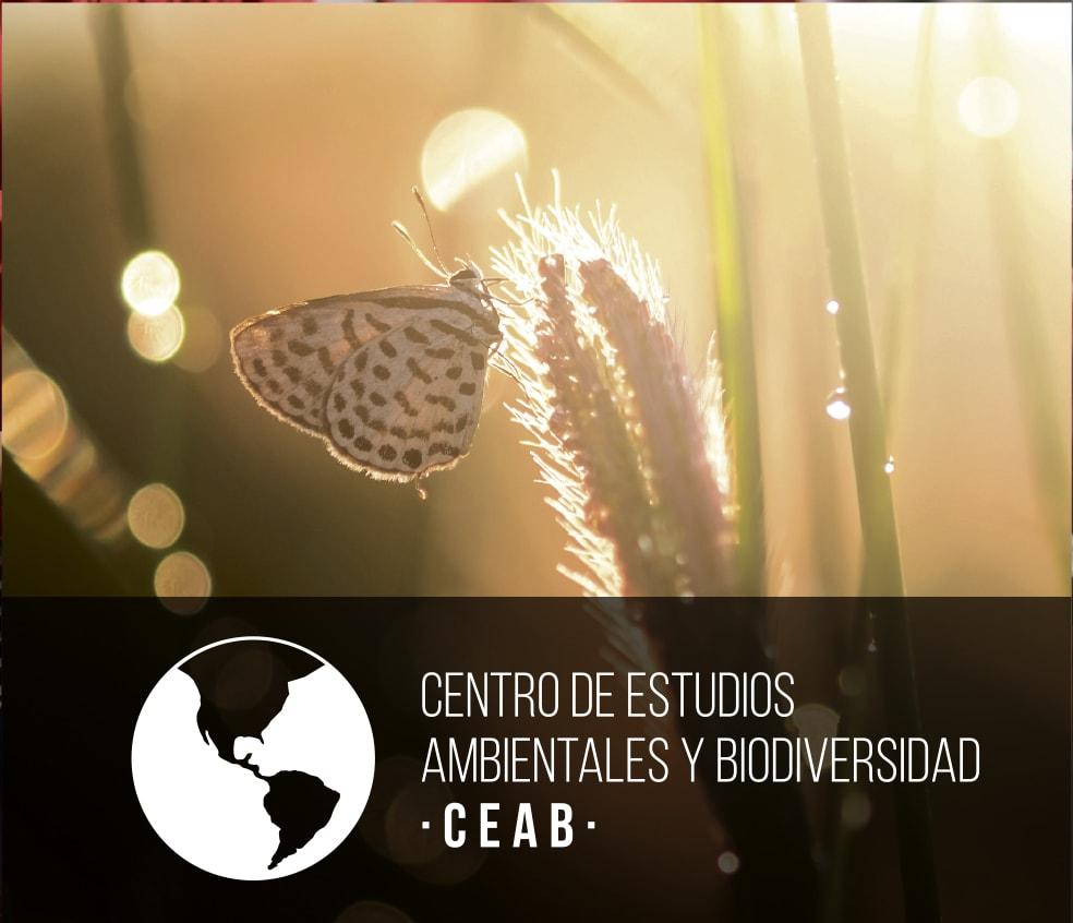 Banner CEAB UVG