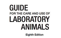 Vista previa Guía de cuidado de animales de laboratorio