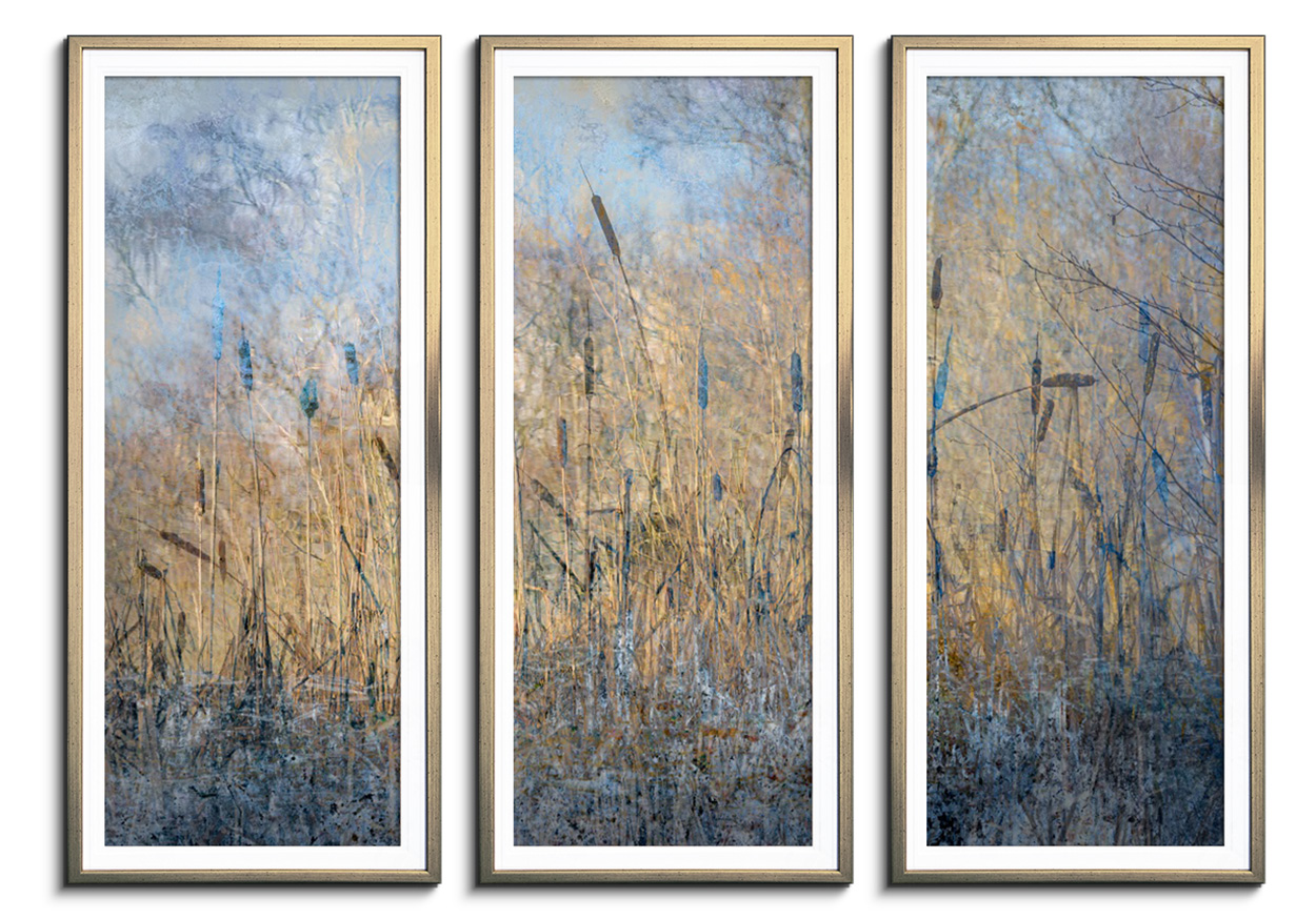 Winter rushes by Light - Triptych by Abstract