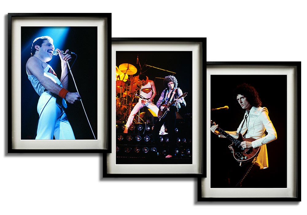 Rare Queen collection   by Barry Plummer