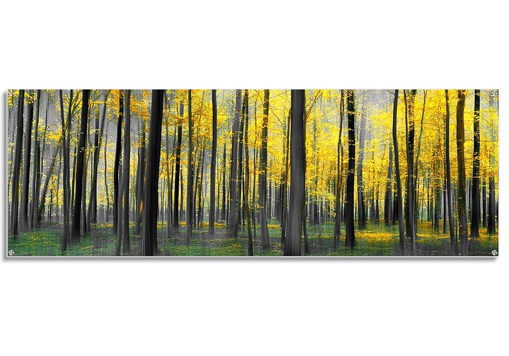 Acrylic print - Trees series  by