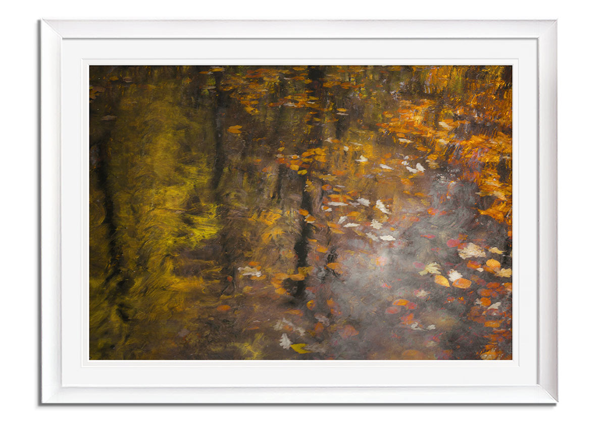 Autumn Impression  by Nel Talen