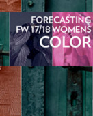 Women s fw 17 18 top color forecast