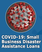 Disaster assistance loans for small businesses impacted by covid 19