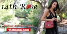 14th rose