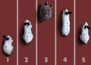 The competitive matrix