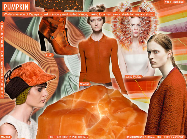 fashion-trend-of-the-year-2015-modern-seventies-3pumpkin_mood