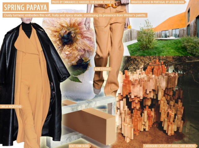 spring-papaya-women-s-key-color-s-s-2016-spring-papaya-moodboard