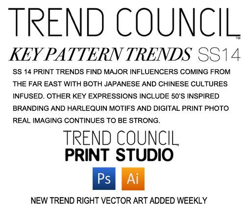 trendcouncil-ss14_pattern1