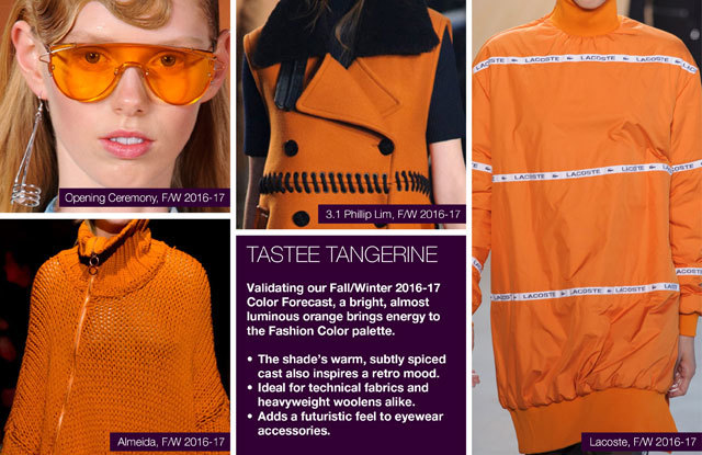 #Trendstop on #WeConnectFashion, Key Women's Catwalk Color FW 16/17: Tastee Tangerine