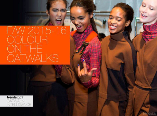 women-s-runway-key-color-report-f-w-2015-cayenne_backstage